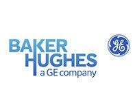 Baker Hughes - Referências TDGI Portugal
